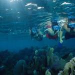 snorkelling_385x215